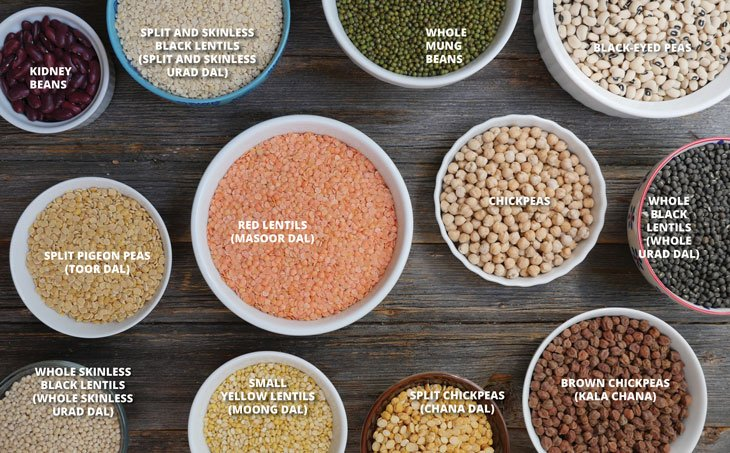 2016 seed guide for red lentils