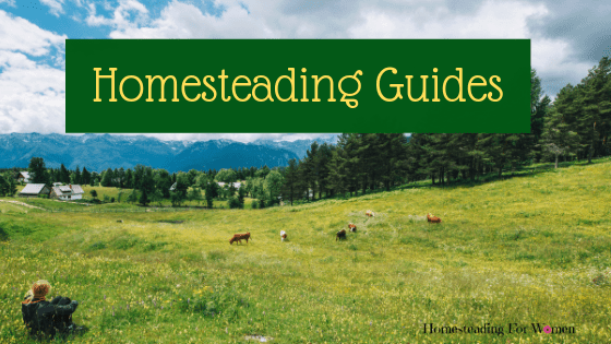 womens guide to homesteading pintrest