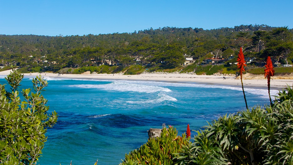 guide to monterey and carmel