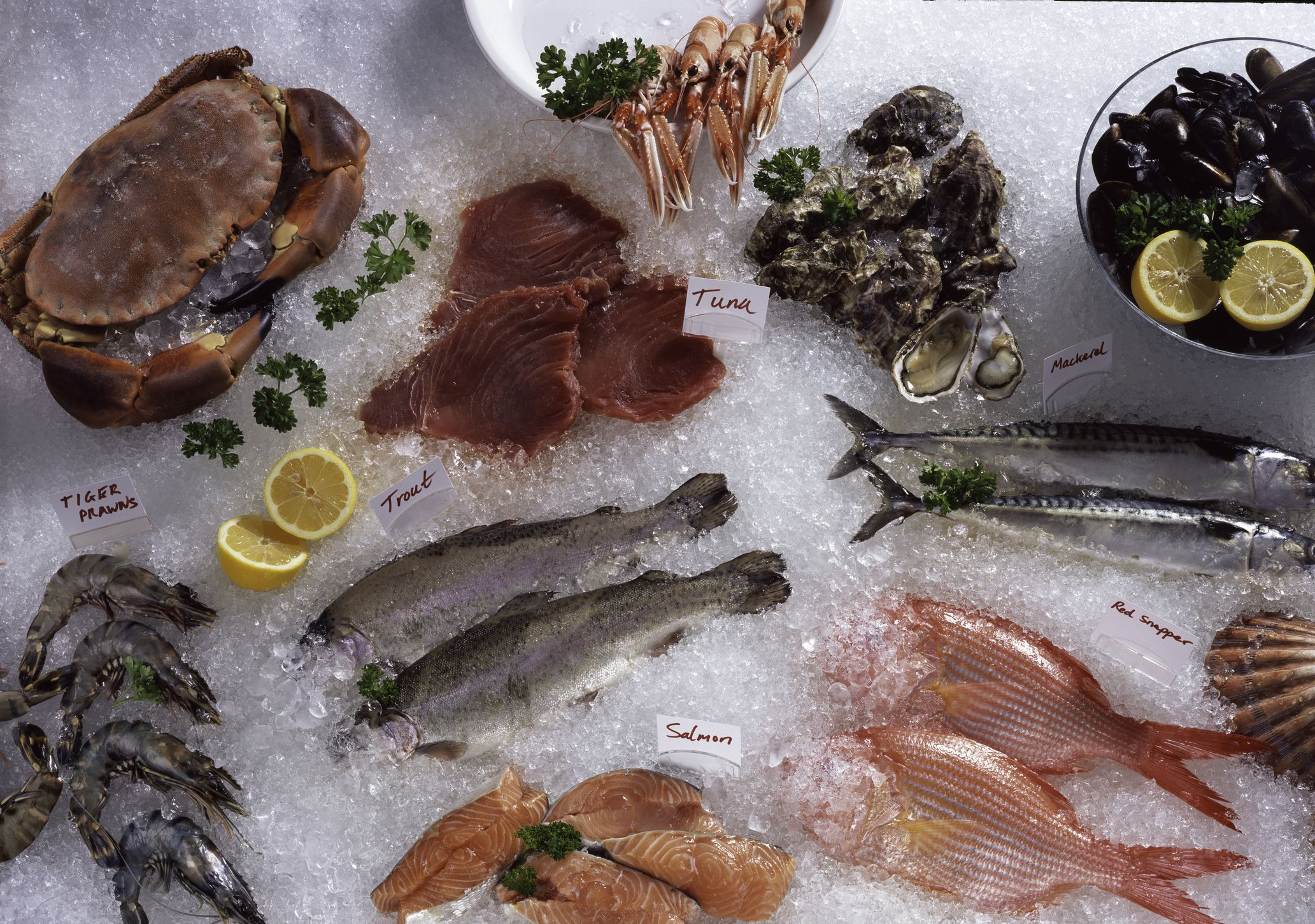 seafood watch west coast guide